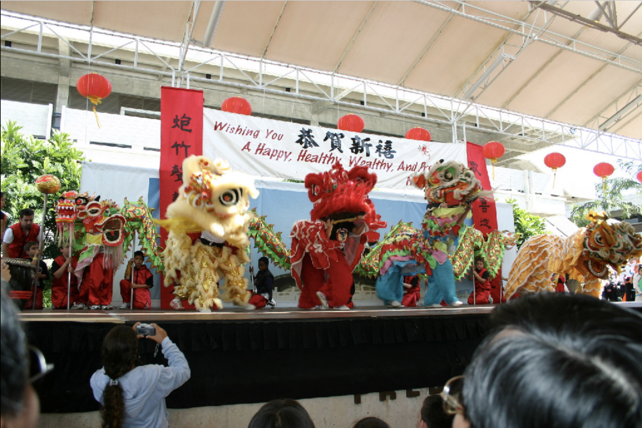 Miami Chinese new Year Festival 2019