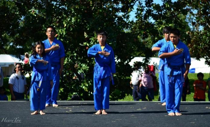 Vovinam Martial Arts