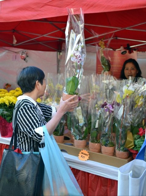 Chinese New Year Flower Market Fair - Asia Trend