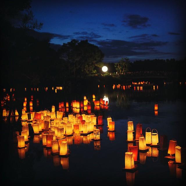 Morikami Museum and Japanese Gardens - Lantern Festival: In The Spirit Of Obon