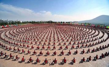 Shaolin Temple Tagou Kung Fu