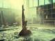 Oita's Amazing Hot Springs